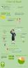 fiori di Bach infographic